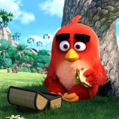 The Angry Birds Movie (Teaser Trailer & Photos)